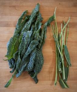 holiday kale curtido salad-1