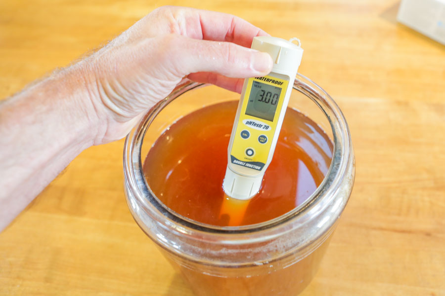 pH level for Kombucha - What is the correct level
