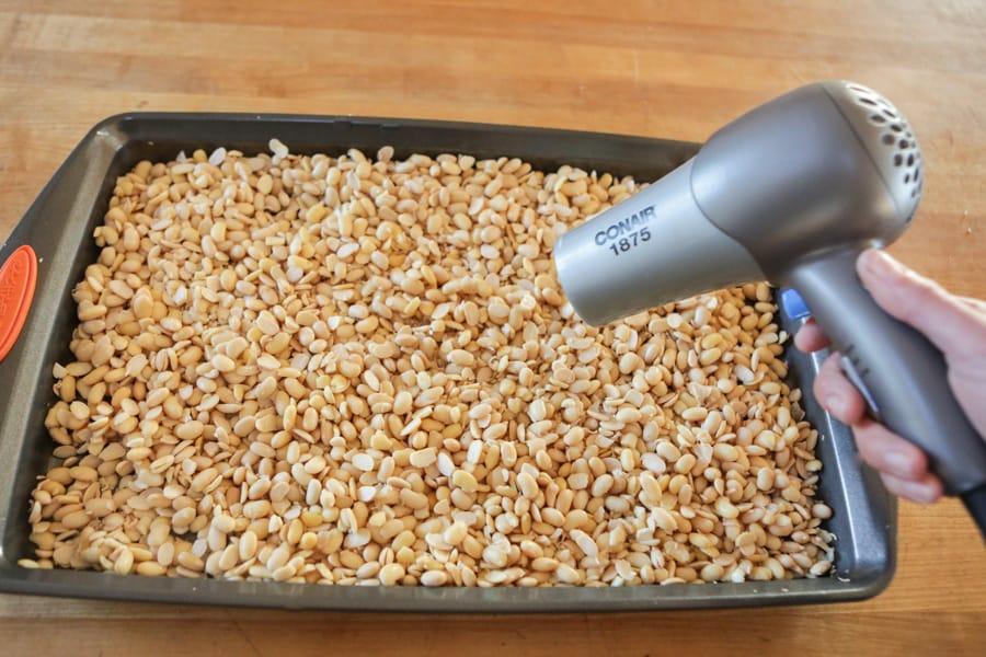 How To Make Your Own Tempeh Recipe Fermentation Recipes