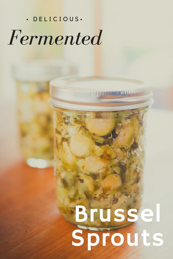 Fermented Brussel sprout dish which utilizes seasonings of rosemary, thyme and oregano. A delicious accompaniment to most any meal.