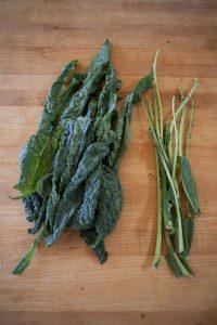 Prebiotics - kale